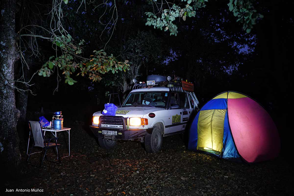 Campamento en el bosque