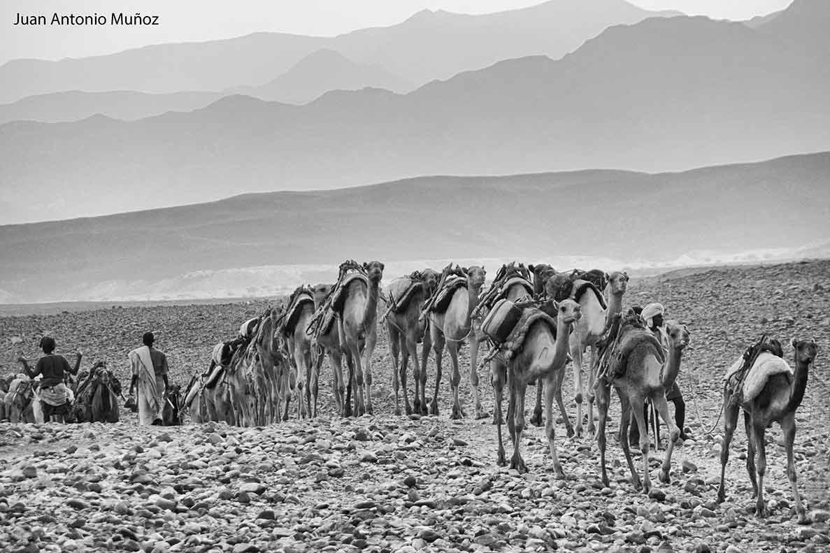 Caravana sal Etiopía