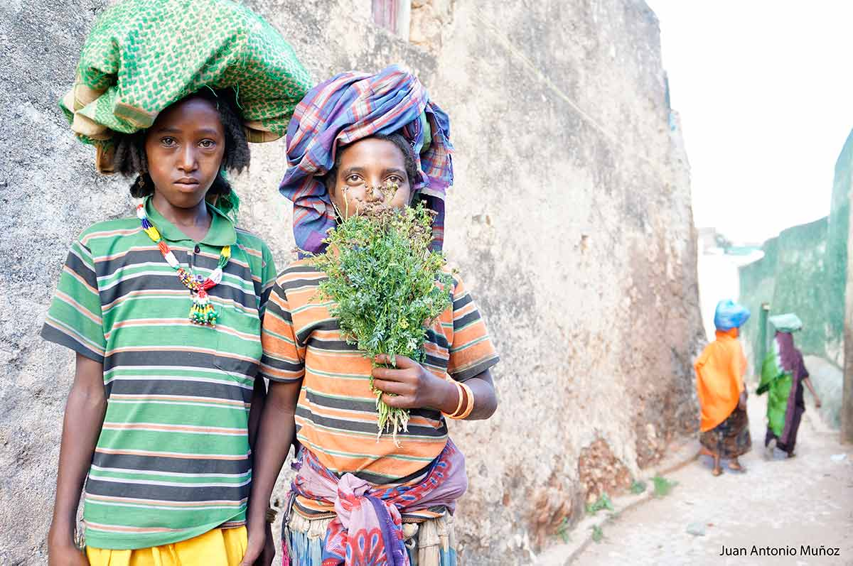 Chat en Harare Etiopía