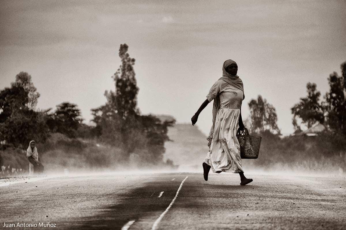 Cruzando la carretera