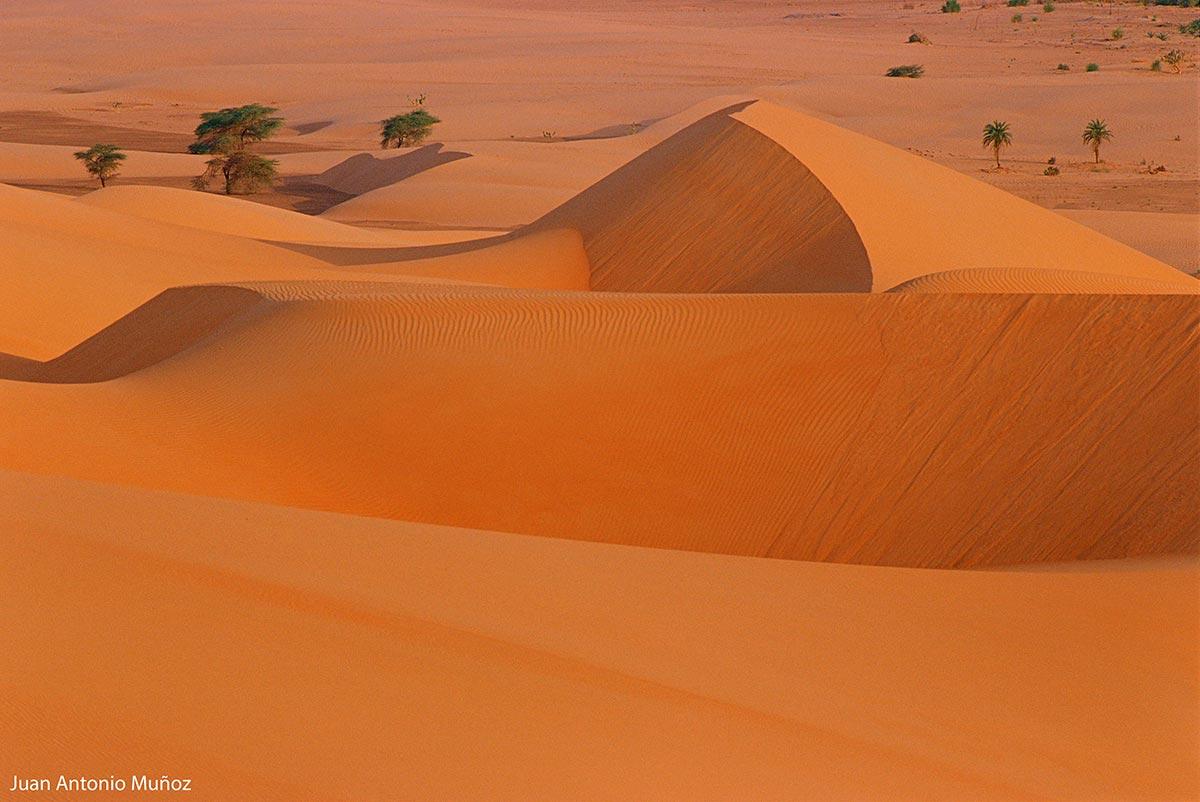Dunas-en-Mauritania