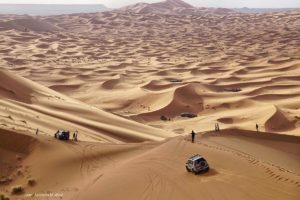 Mar de dunas en la CUP 180