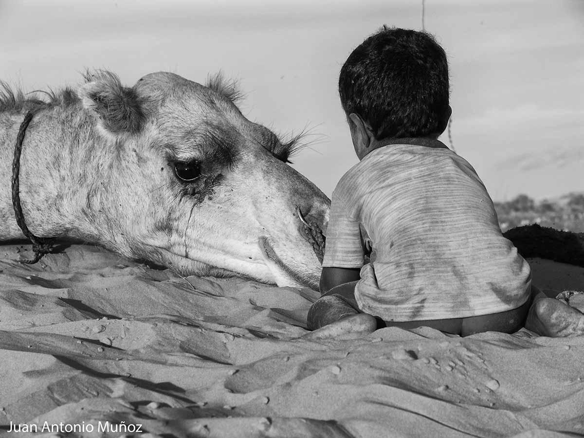 Ternura en Mauritania