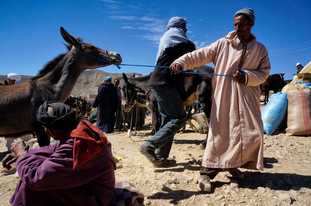 Viaje a Marruecos Alto Atlas