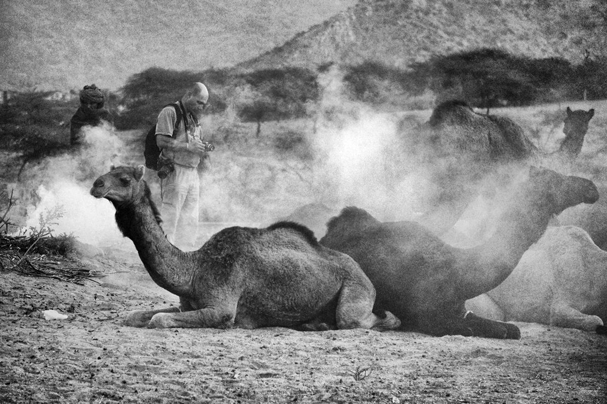 Viaje a Pushkar Camel Fair