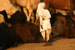 Viaje fotográfico a India