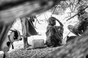 Bajo el árbol Kenia