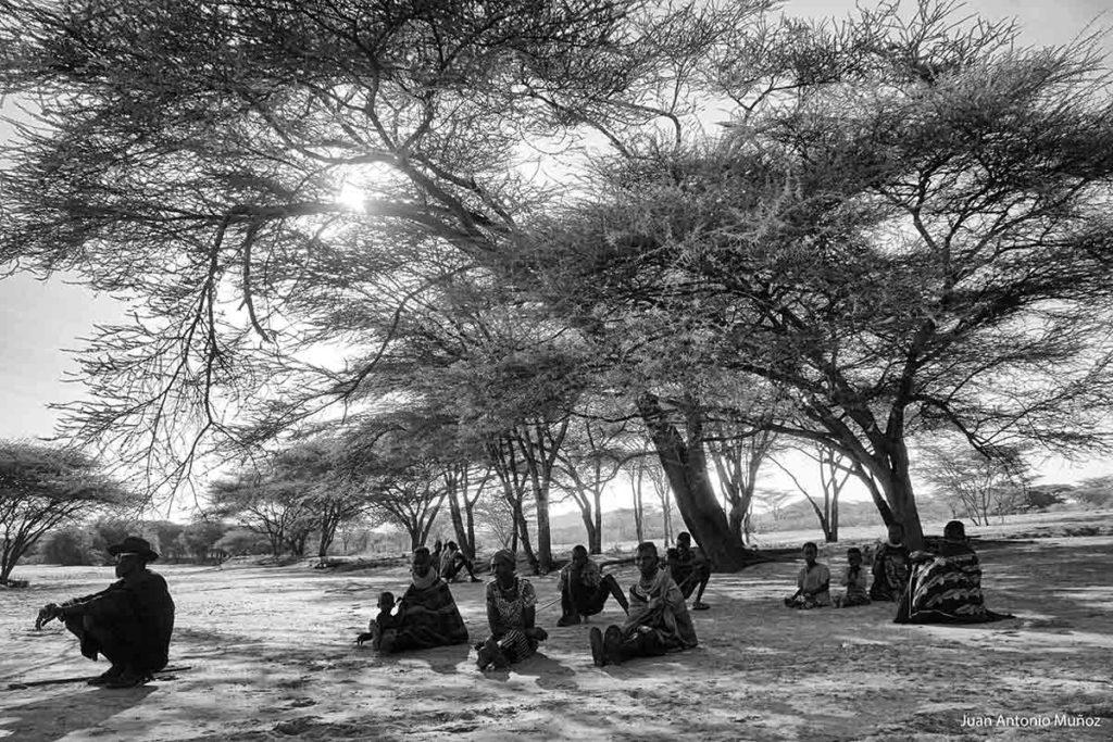 Descanso bajo el árbol Kenia