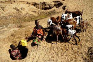 Pozo animales Kenia
