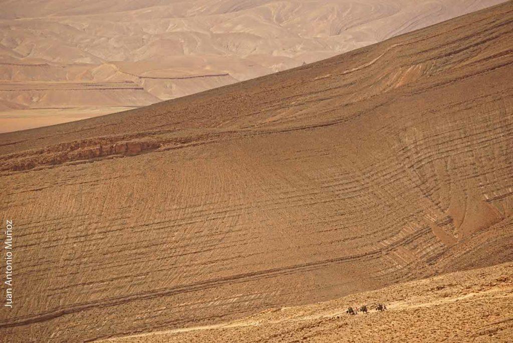 Caravana Alto Atlas Marruecos