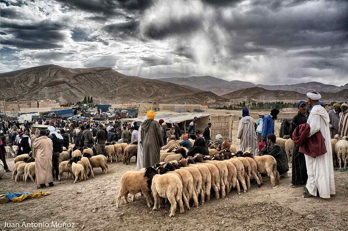 Mercado de ganado Imilchil Marruecos