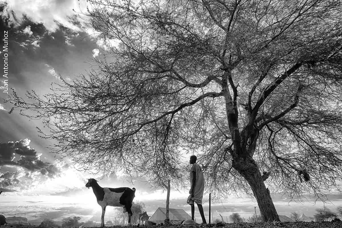 Contraluz amanecer. Mauritania
