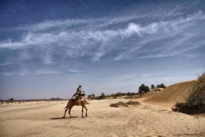 Camellero solitario. Mauritania