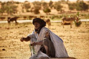 Pastor y ganado. Mauritania