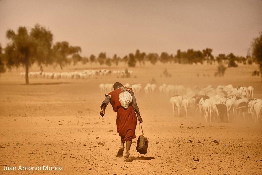 Pastor en el Sahel. Mauritania