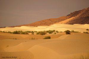 Atardecer en las dunas. Mauritania