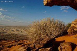 Rocas y arena. Mauritania