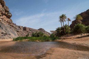 Guelta. Mauritania