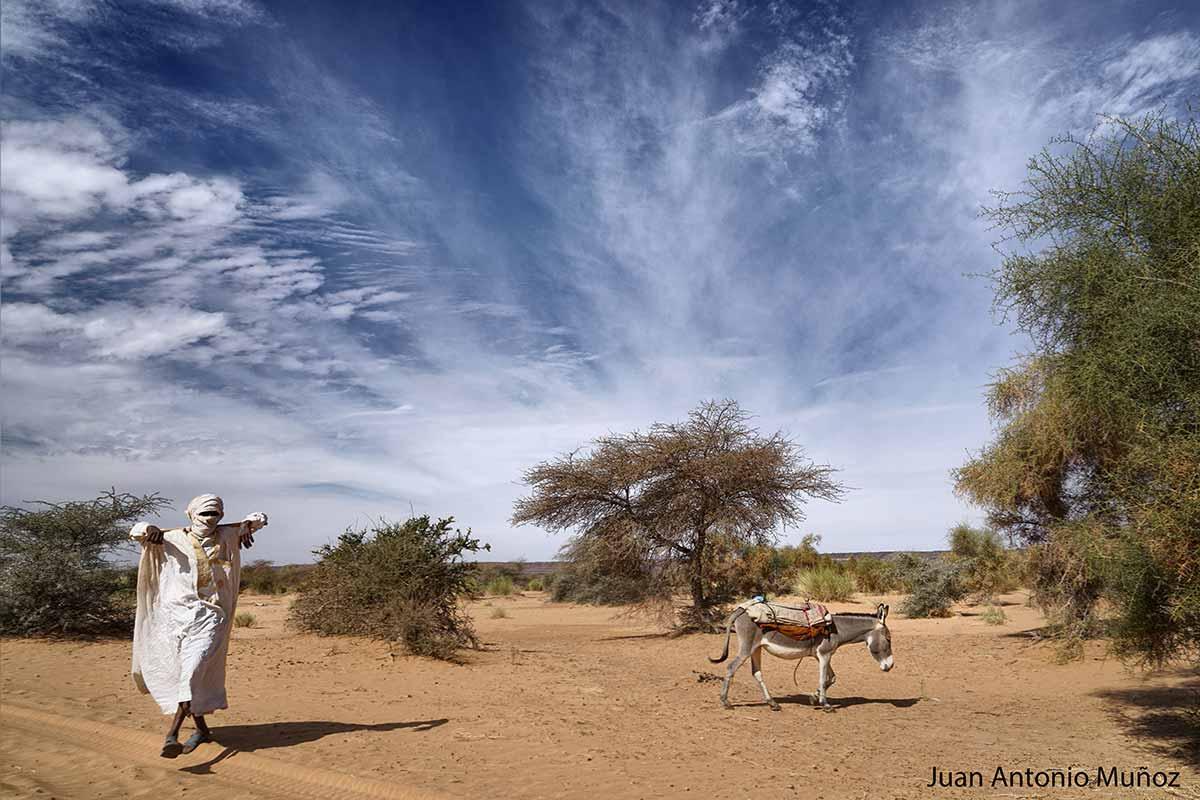 Maura y su burro. Mauritania