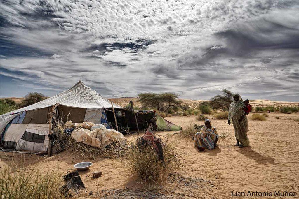 En la jaima. Mauritania