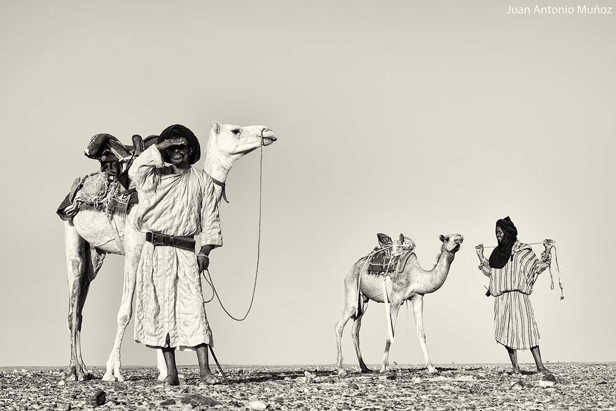 Nómadas en la frontera. Mauritania