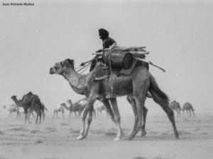 Caravana en tormenta. Mauritania