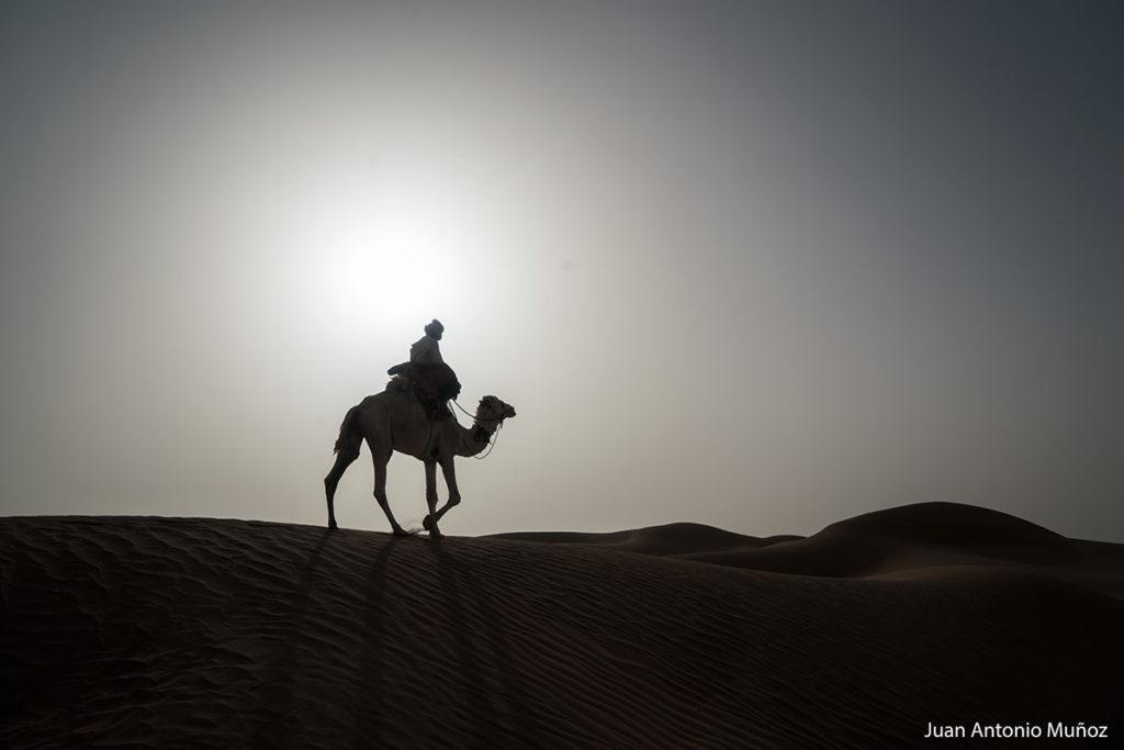 Atardecer Sahara. Marruecos