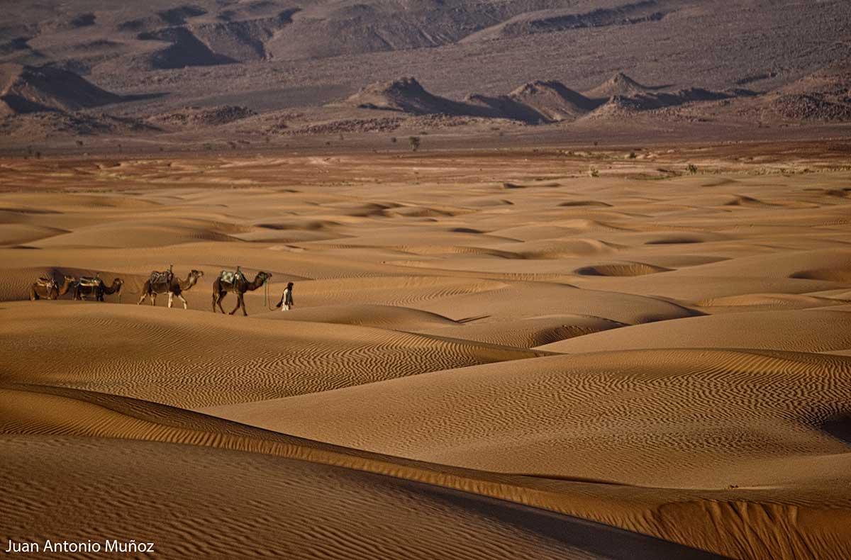 Mar de dunas. Marruecos