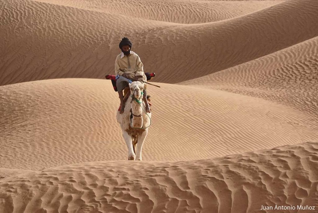 Entre olas de arena. Marruecos