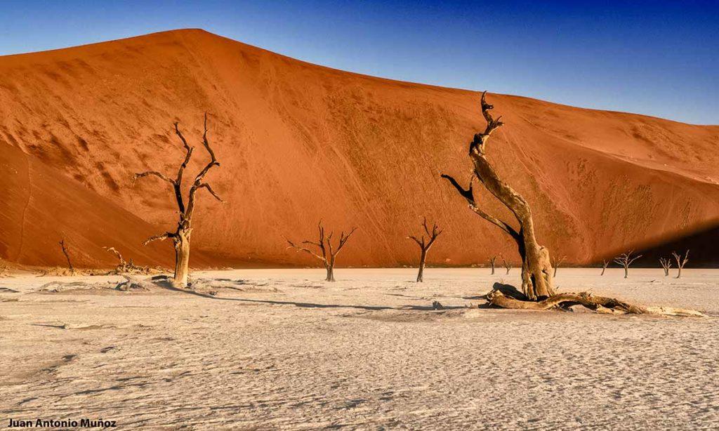 Ded Vlei. Namibia