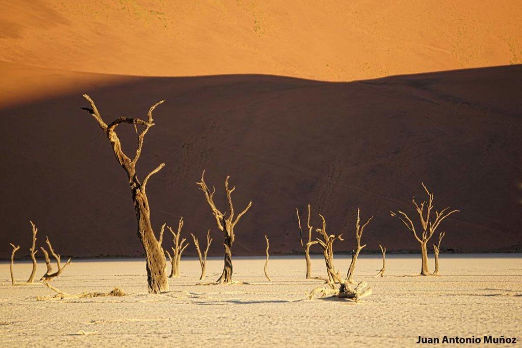 Death Vlai 1. Namibia