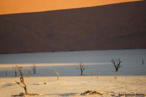 Death Vlai 2. Namibia