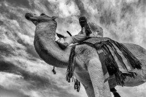 Sobre el camello. Marruecos