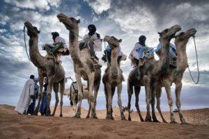 Camelleros en Mhamid. Marruecos