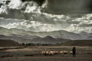 Pastor atardecer. Marruecos