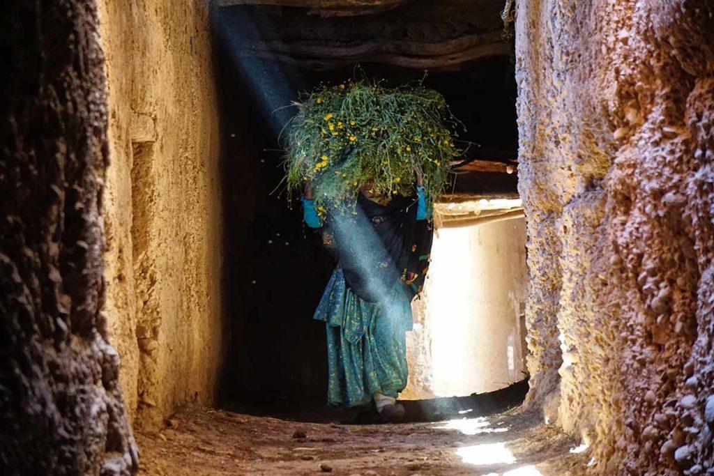 Mujer e hierba. Marruecos