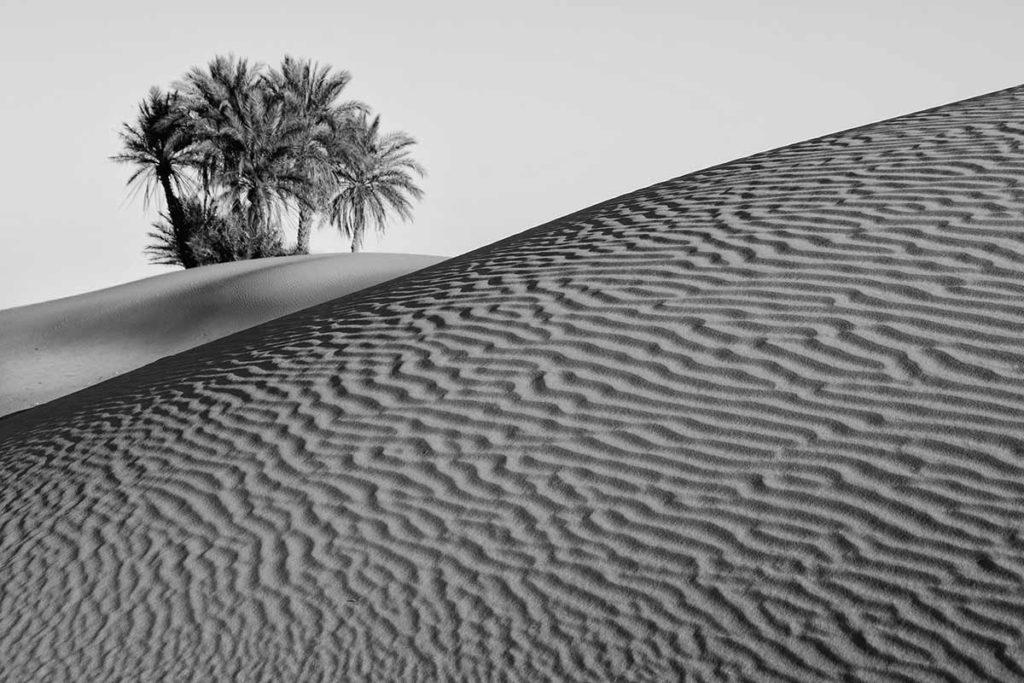Isla en dunas. Marruecos