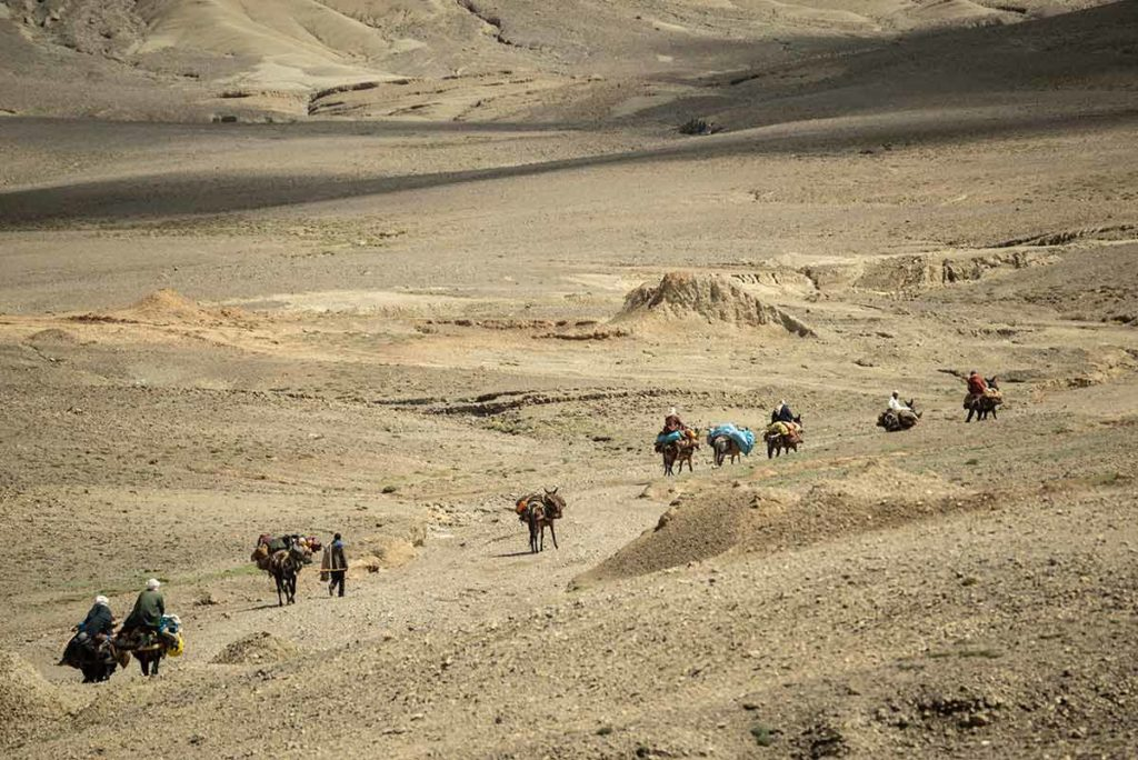 Cabalgando hacia el mercado. Marruecos