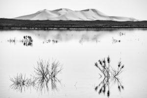 Dunas en lago. Marruecos