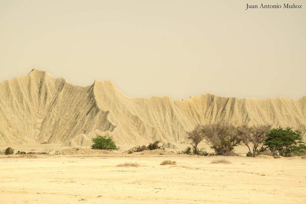 Desierto Irán 2