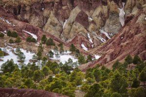 Bosque de colores. Marruecos