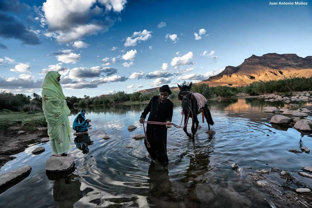 Cruzando a mula el Draa. Marruecos