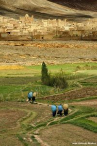 Cargando en Agoudal 2. Marruecos