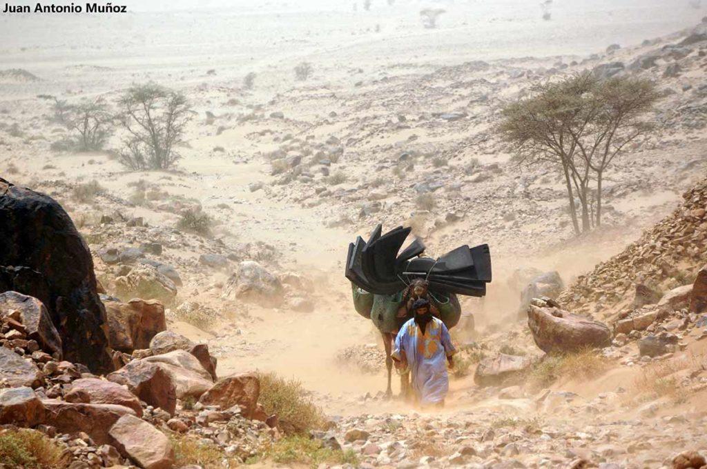 Camellero en tormentas. Marruecos