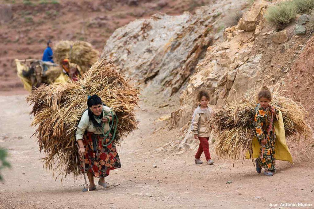 Llegando con la carga. Marruecos
