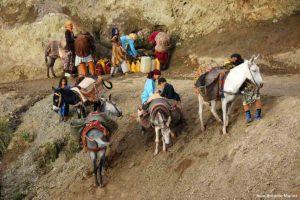 Con las mulas en fuente. Marruecos