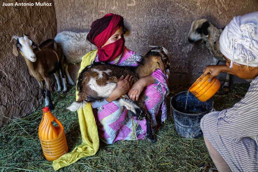 Chicas en establo. Marruecos