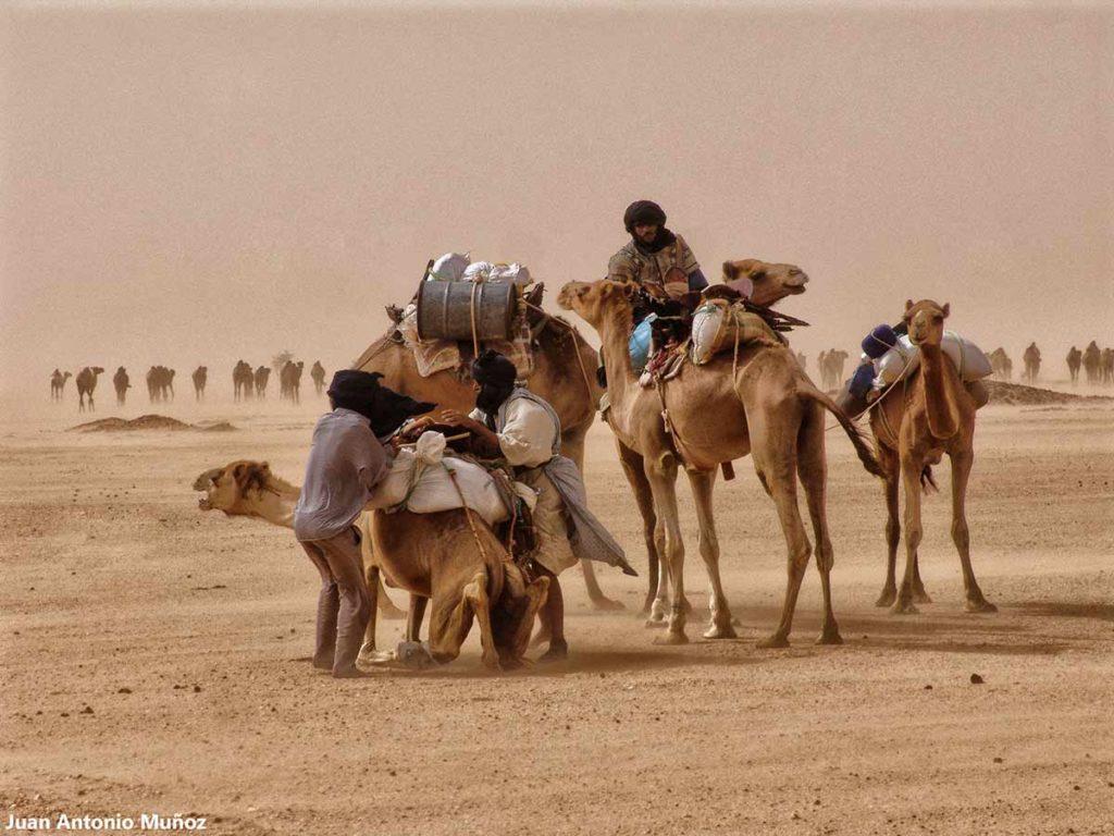 Caravana en tormenta. Marruecos
