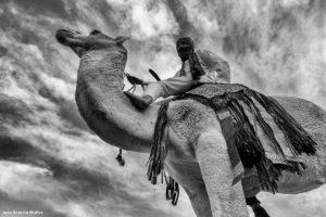 Camellero montado. Marruecos