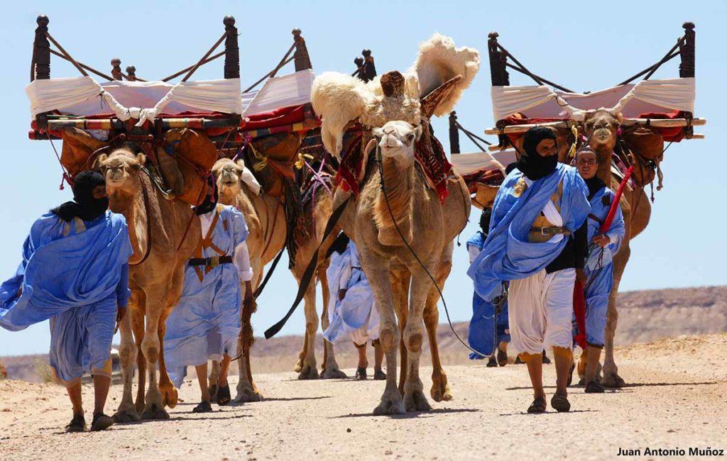 Caravana llegando a Moussem. Marruecos